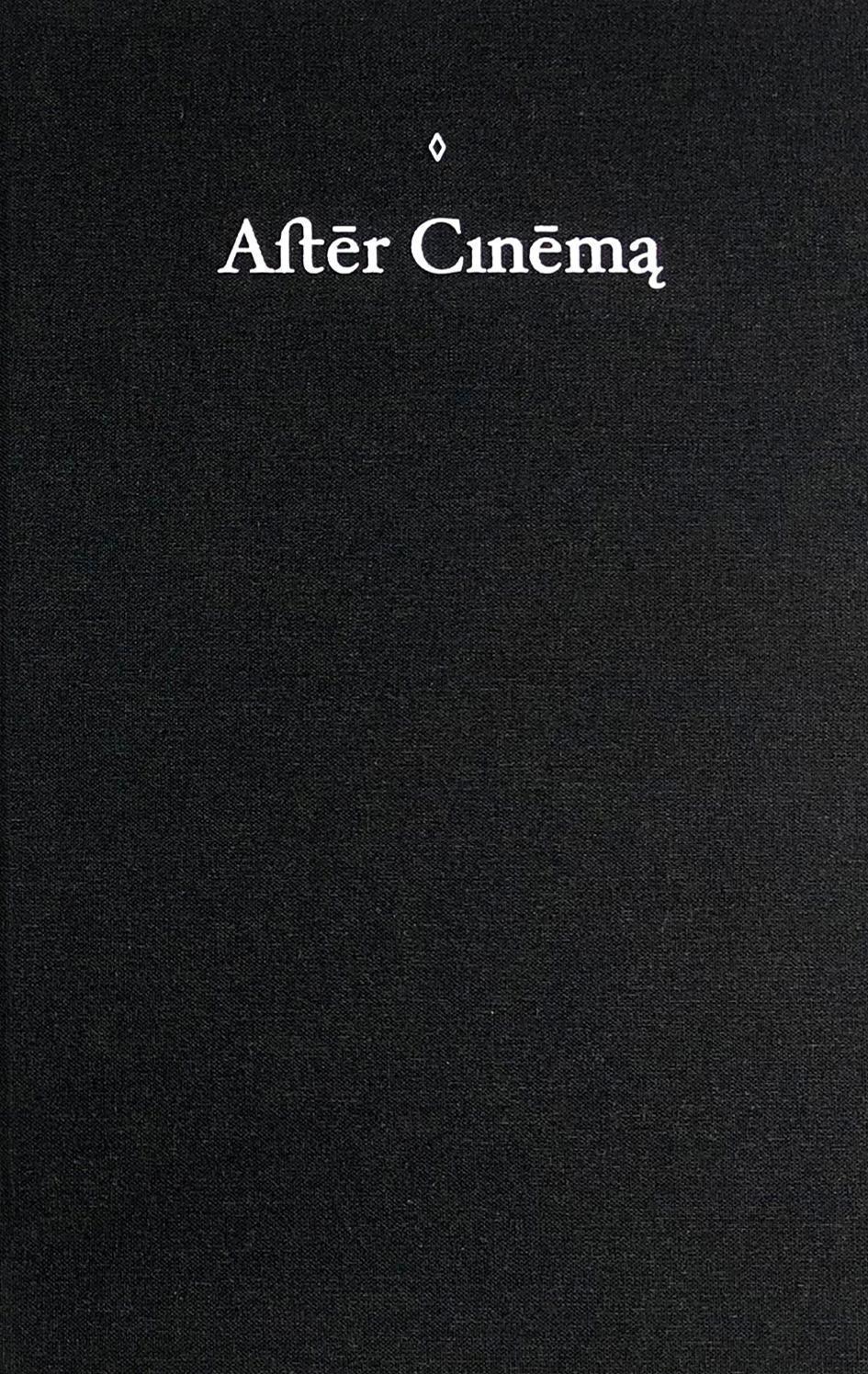 Azin Feizabadi. After Cinema